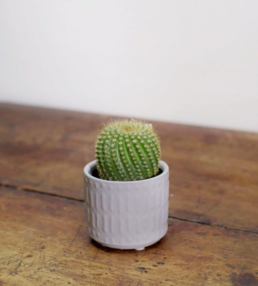 Vaso bianco opaco D 6,6